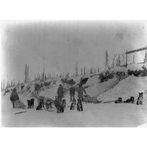teams,Postal Service,dog sled teams,Montauk US Mail Station,Alaska,AK