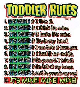 TODDLERS RULES ITS MINE Cute Kids Girls Boys Funny Tee