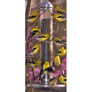 17 in. Metal Spiral Finch Tube Bird Feeder   Spiral, Squirrel Proof, 2