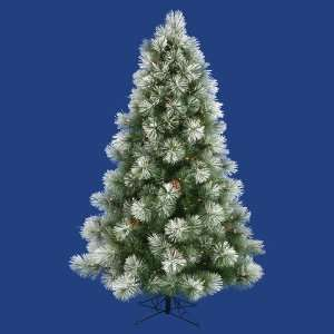 Clear Pre Lit Flocked Scotch Pine Christmas Tree