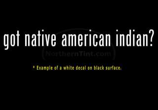 got native american indian? Vinyl wall art car decal