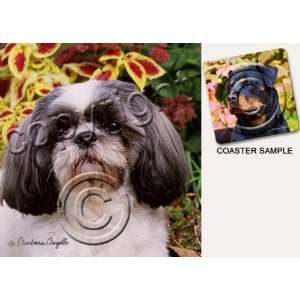Shih Tzu Dog Drink Coasters   Gray & White Kitchen