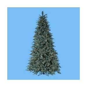 Noble Spruce Christmas Tree   Clear Lights by Gordon