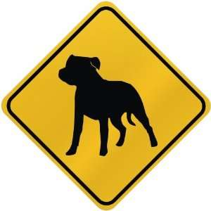 ONLY  STAFFORDSHIRE BULL TERRIER  CROSSING SIGN DOG