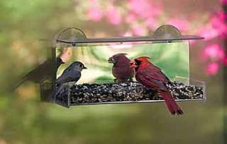 Duncraft Cardinal Mirror Window Bird Feeder