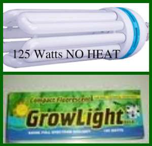 125 watt Compact fluorescent Grow light Hydroponic GROW