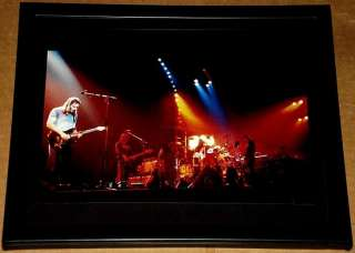 PINK FLOYD DAVID GILMOUR WATERS LIVE FRAMED PORTRAIT
